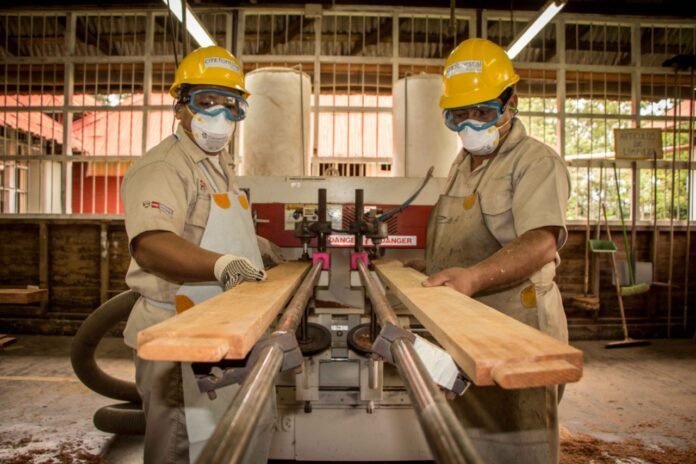 A la fecha, se han realizado más de 80 talleres en los sectores agroindustrial, cuero y calzado, forestal-madera, textil, pesca- acuícola, entre otros.