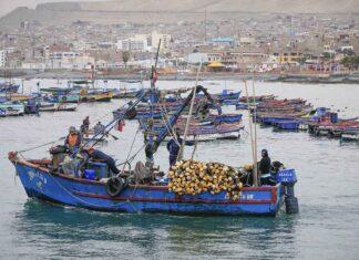 Formalización de embarcaciones pesqueras