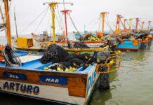 Sector pesquero peruano.