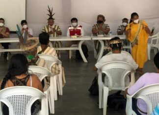 Emergencia sanitaria más de 300 lideresas y líderes indígenas de cinco departamentos son capacitados por el Ministerio de Cultura