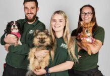 """National Geographic promueve la adopción de mascotas con el especial """"Adopta, no compres""""."""